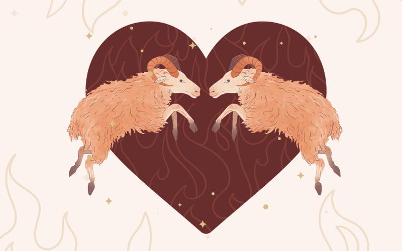 Aries & Aries Match