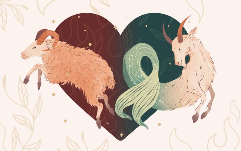 Aries & Capricorn Match