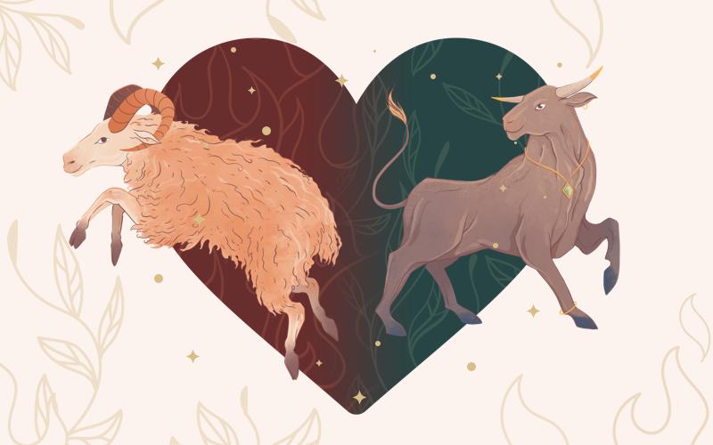 Aries & Taurus Match