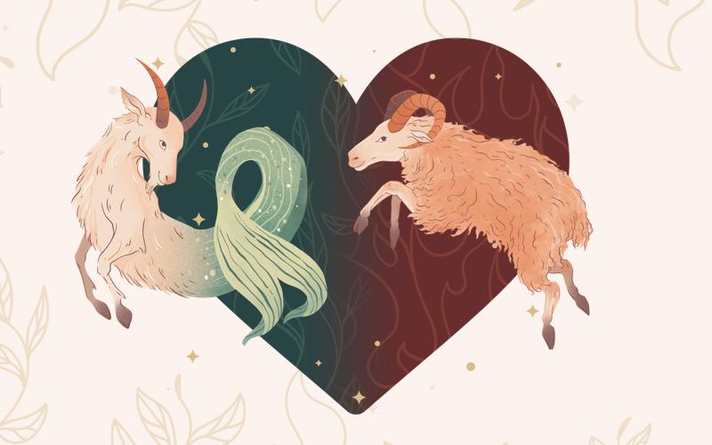 Capricorn and Aries Match