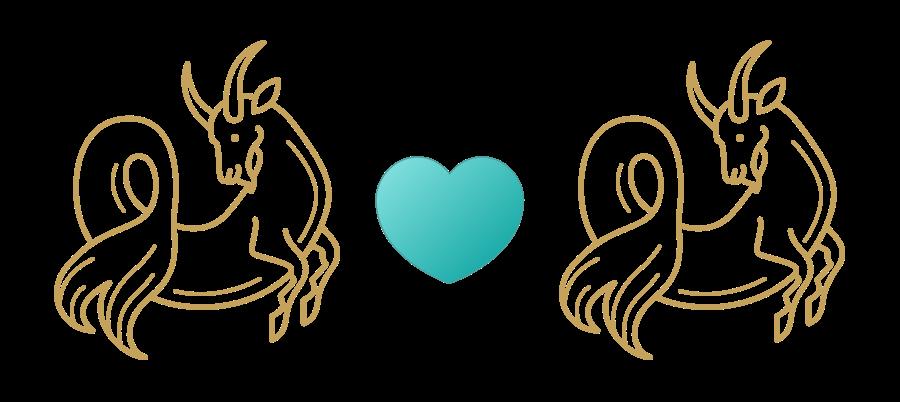 Capricorn & Capricorn Compatibility