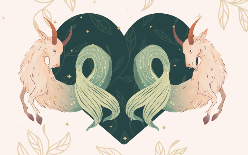 Capricorn and Capricorn Match
