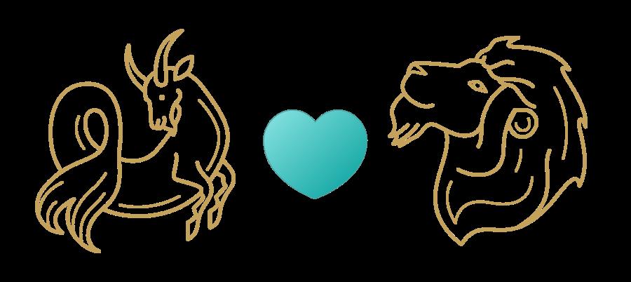 Capricorn & Leo Compatibility