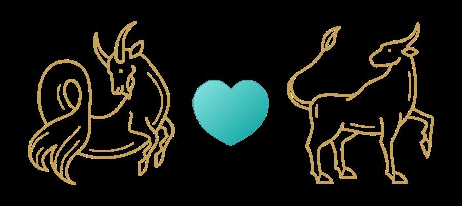 Capricorn & Taurus Compatibility