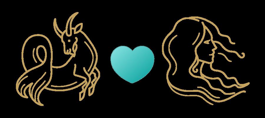 Capricorn & Virgo Compatibility