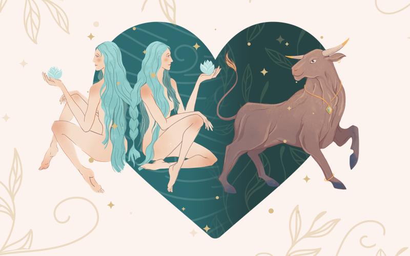Gemini and Taurus Match