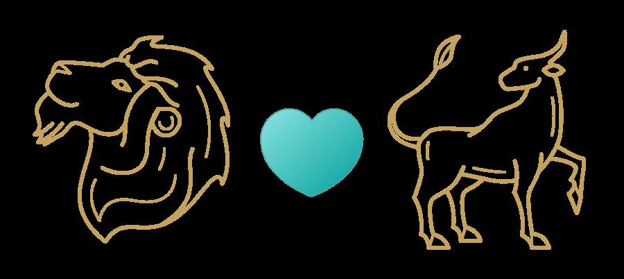 Leo & Taurus Compatibility