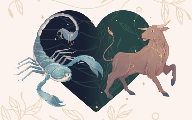 Scorpio and Taurus Match