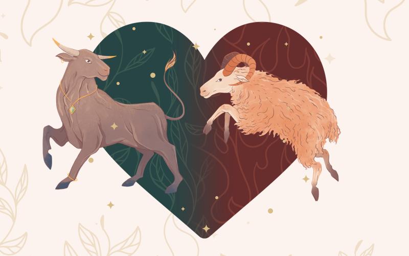 Taurus and Aries Match