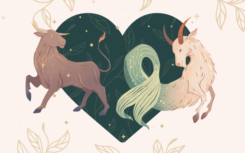 Taurus and Capricorn Match