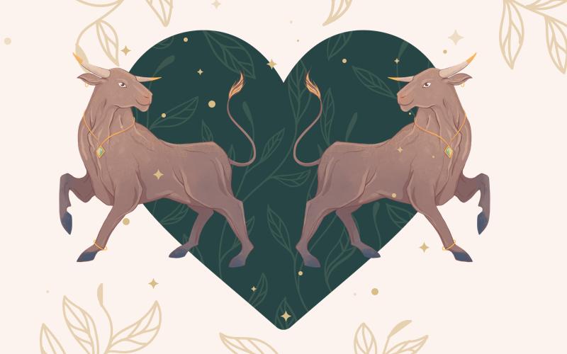 Taurus and Taurus Match
